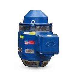 Aurora Motors 4WP1HS025SE Standard Efficiency Vertical Hollow Shaft Pump Motor 25 HP 230/460V Aurora Motors, VHS Motors, vertical hollow shaft pump motors, aurora motors vhs motors, aurora motors vertical hollow shaft motors, agriculture, municipalities, well drilling, mining, pulp and paper mills