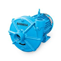 Barmesa IA2-15-2 TEFC End-Suction Centrifugal Pump 15 HP 3PH end-suction pumps, centrifugal pumps, Barmesa IA Series, IA Series, Barmesa Pumps,end-suction centrifugal pumps