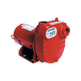 Red Lion RL-S50 Cast Iron Surface Effluent Pump 0.5 HP 115/230V Red Lion effluent Pump, effluent pumps, cast iron eflluent pumps, submersible effluent pumps